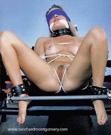 ssrichardmontgomery download nlink bondage spread sp16